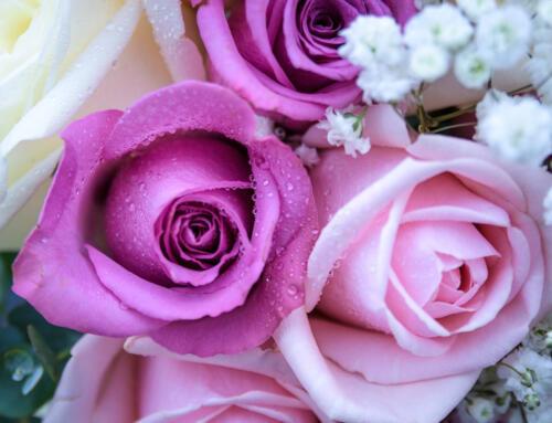 A Celebration of Wedding Flowers on British Flowers Week