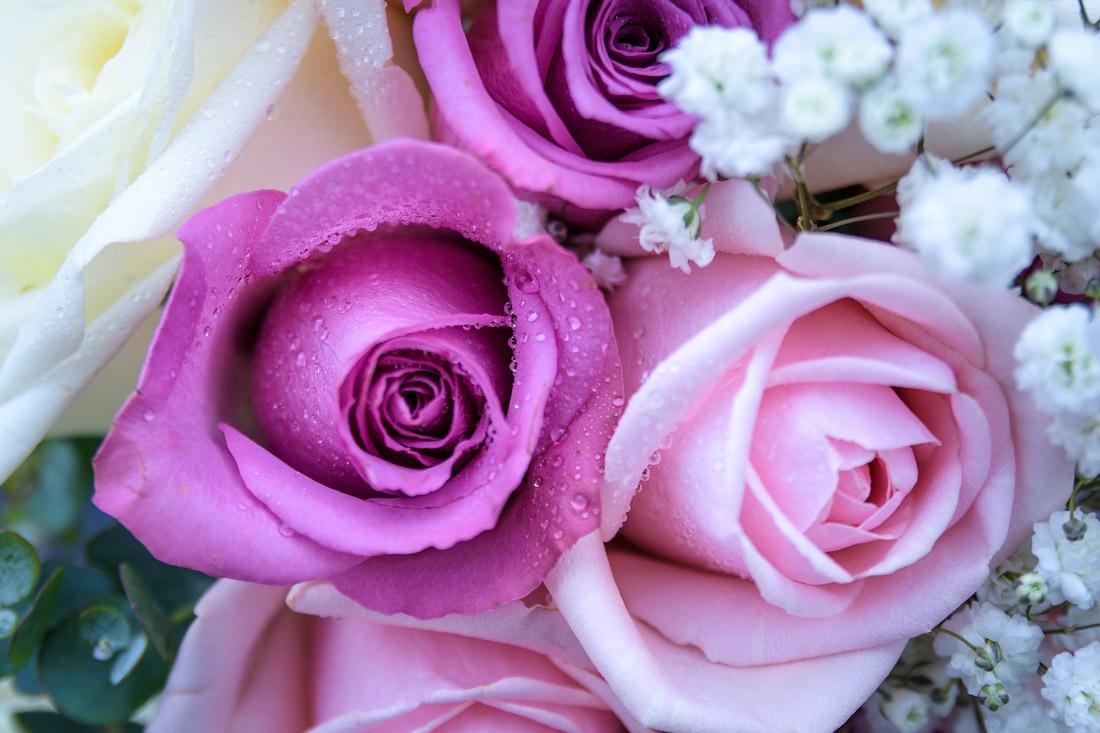 British Flowers Week - Taunton Wedding Photographer FEATURED